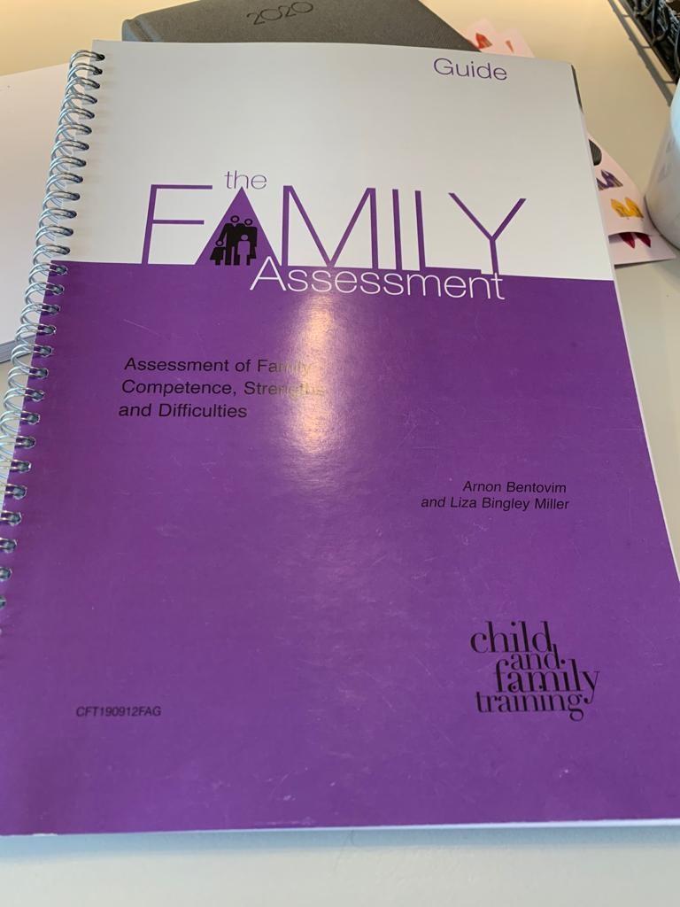 Family Constellation Program